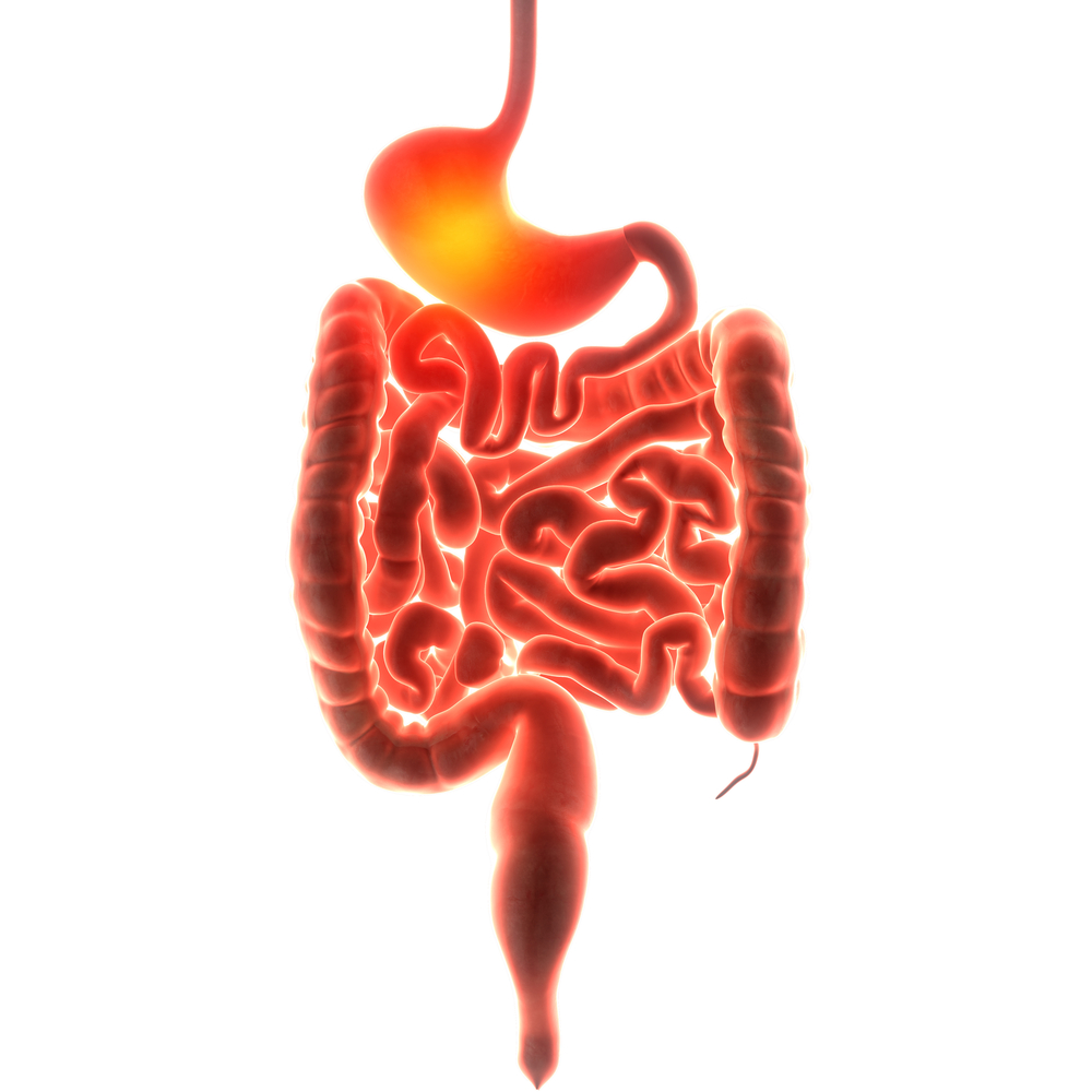 Leaky Gut Syndrome Treatment In Chula Vista